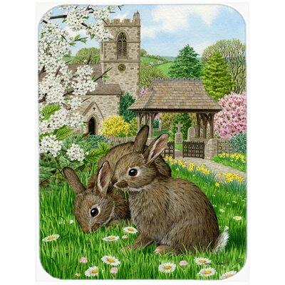Bunny Rabbit Decor Wayfair