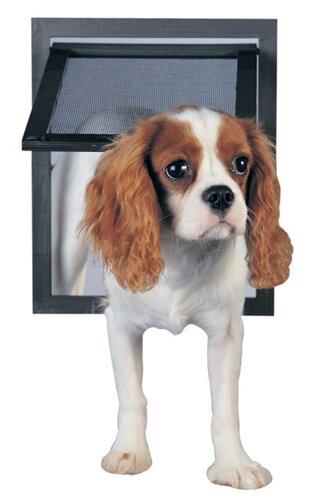 Screen Door With Pet Door Wayfair