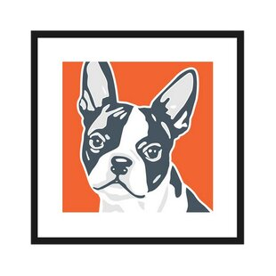Beau Boston Terrier Graphic Art