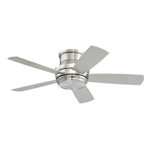 Modern & Contemporary Ceiling Fans