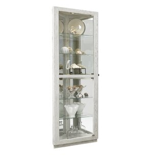 Lowder Dual Door 5 Shelf Lighted Corner Curio Cabinet