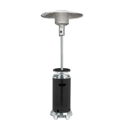 Sol 72 Outdoor Barnhart Tall 48,000 BTU Propane Patio Heater Finish: Black and Stainless Steel