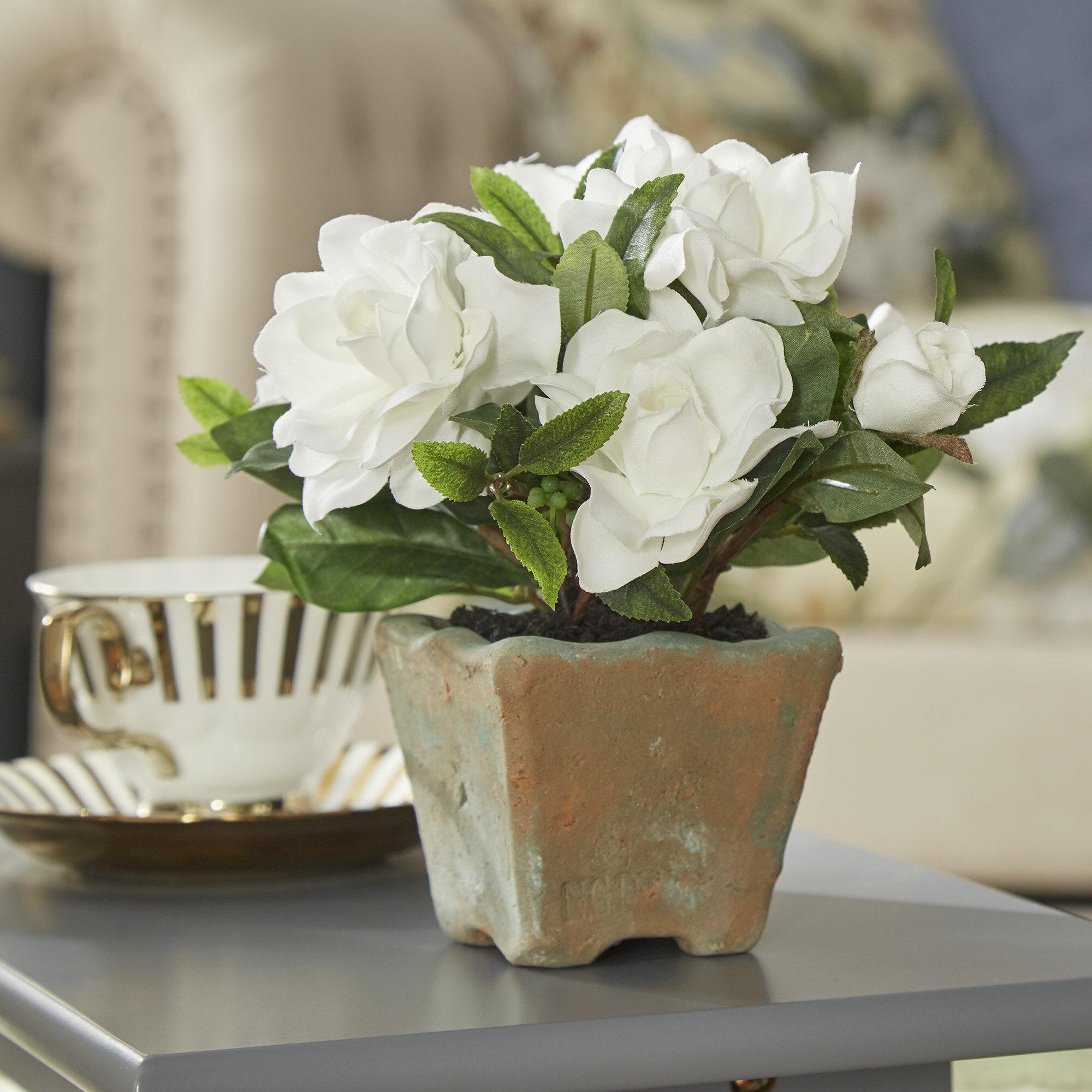 Three posts faux cape jasmine gardenia in clay pot reviews wayfair izmirmasajfo