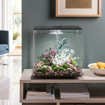 "Led Aquarium Tank Biorb Size: 17"" H X 15.7"" W X 15.7"" D, Color: Black"