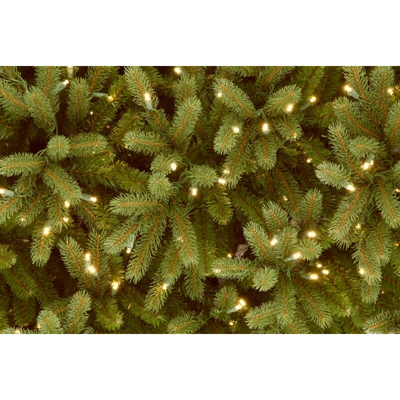 feel real jersey fraser 12 green fir artificial christmas tree with 2000 clear lights