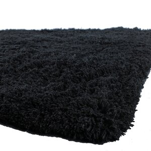 Brule Black Area Rug
