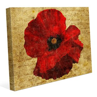 Poppy flower wall art wayfair poppy flower graphic art on wrapped canvas mightylinksfo