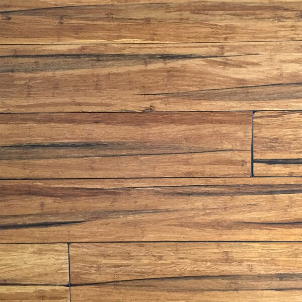 Ecofusion Flooring 5 2 3 Solid Strandwoven Bamboo In Peppercorn Wayfair