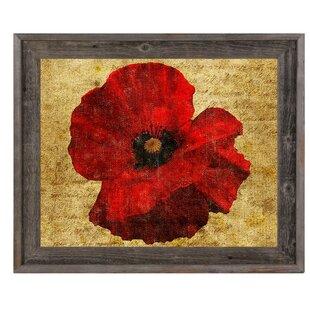 Poppy flower wall art wayfair poppy flower framed graphic art mightylinksfo