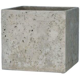 Barber Cement Planter Box
