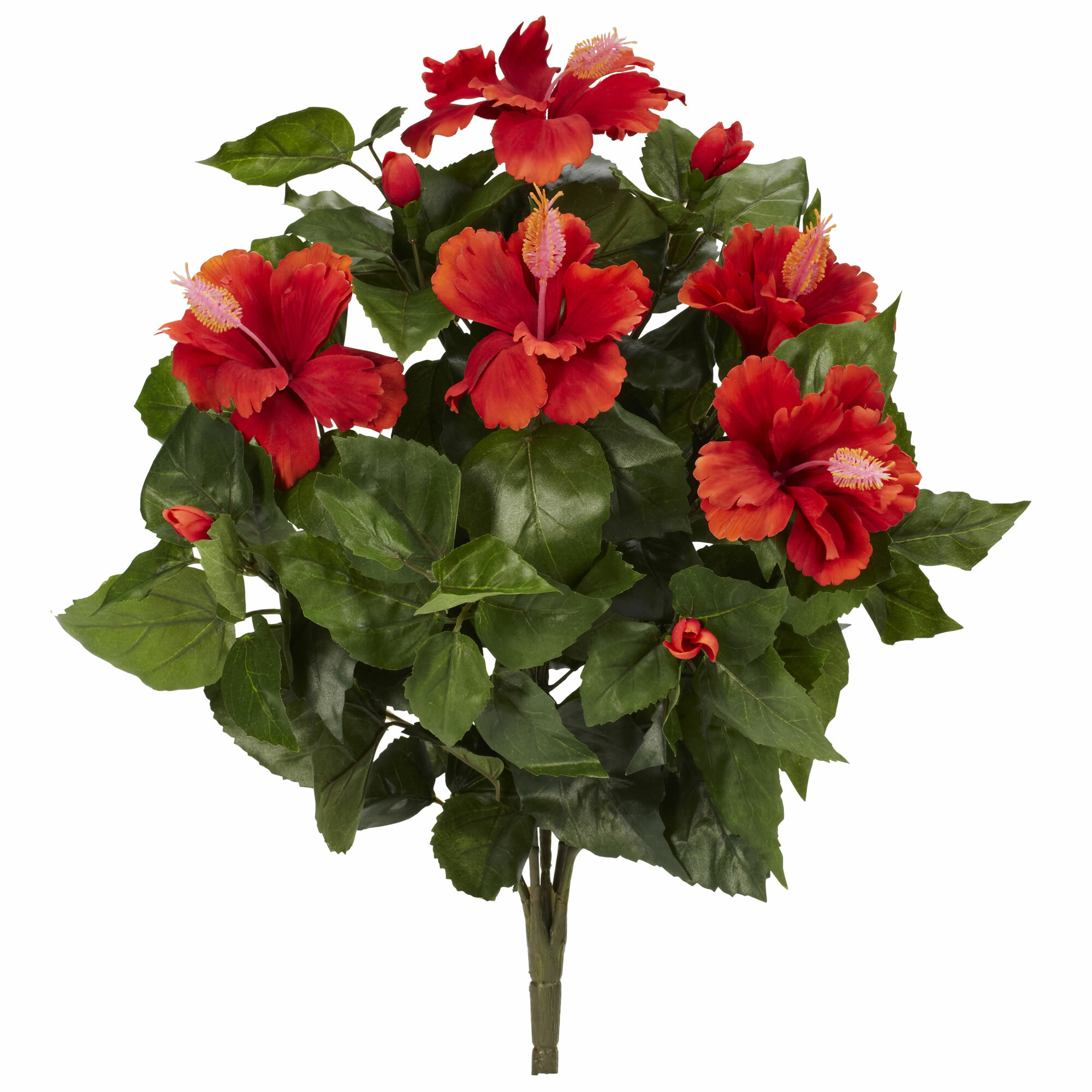 Charlton Home Hibiscus Floral Arrangement Wayfair