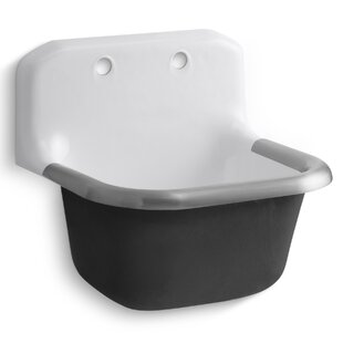 Bannon 24 X 20 5 Wall Mounted Service Sink