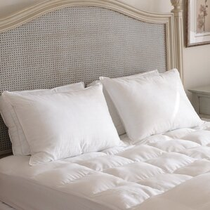 Beyond Down Alternative Pillow (Set of..