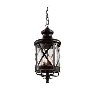 Outdoor hanging lights youll love wayfair 3 light outdoor hanging lantern aloadofball Images