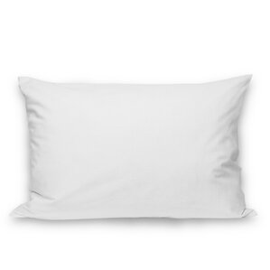 Plain Envelope Pillow Protector (Set of 2) by Alwyn Home