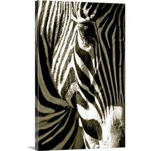 Zebra Wall Art traditional zebra wall art | wayfair