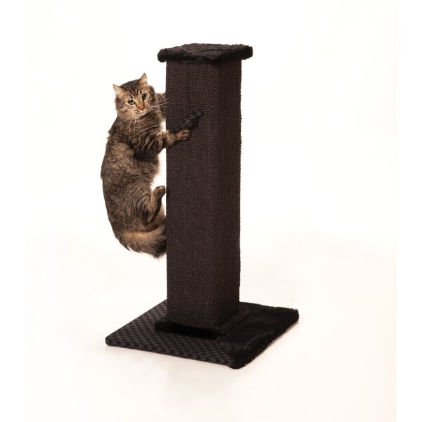 Max marlow tower sisal scratching post reviews wayfair for Chaise lounge cat scratcher