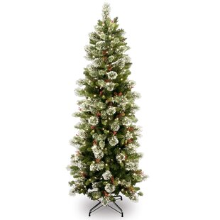 Wintry Slim 6.5u0027 Green Pine Artificial Christmas Tree With 300 Clear Lights  With Stand