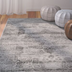 Anael Grey Area Rug