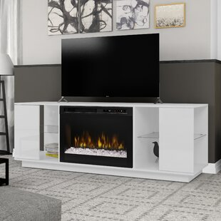 Fireplace TV Stands & Entertainment Centers You\'ll Love | Wayfair.ca