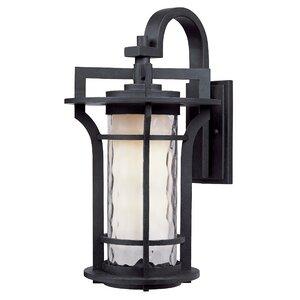 Feltonville 1-Light Outdoor Wall Lantern