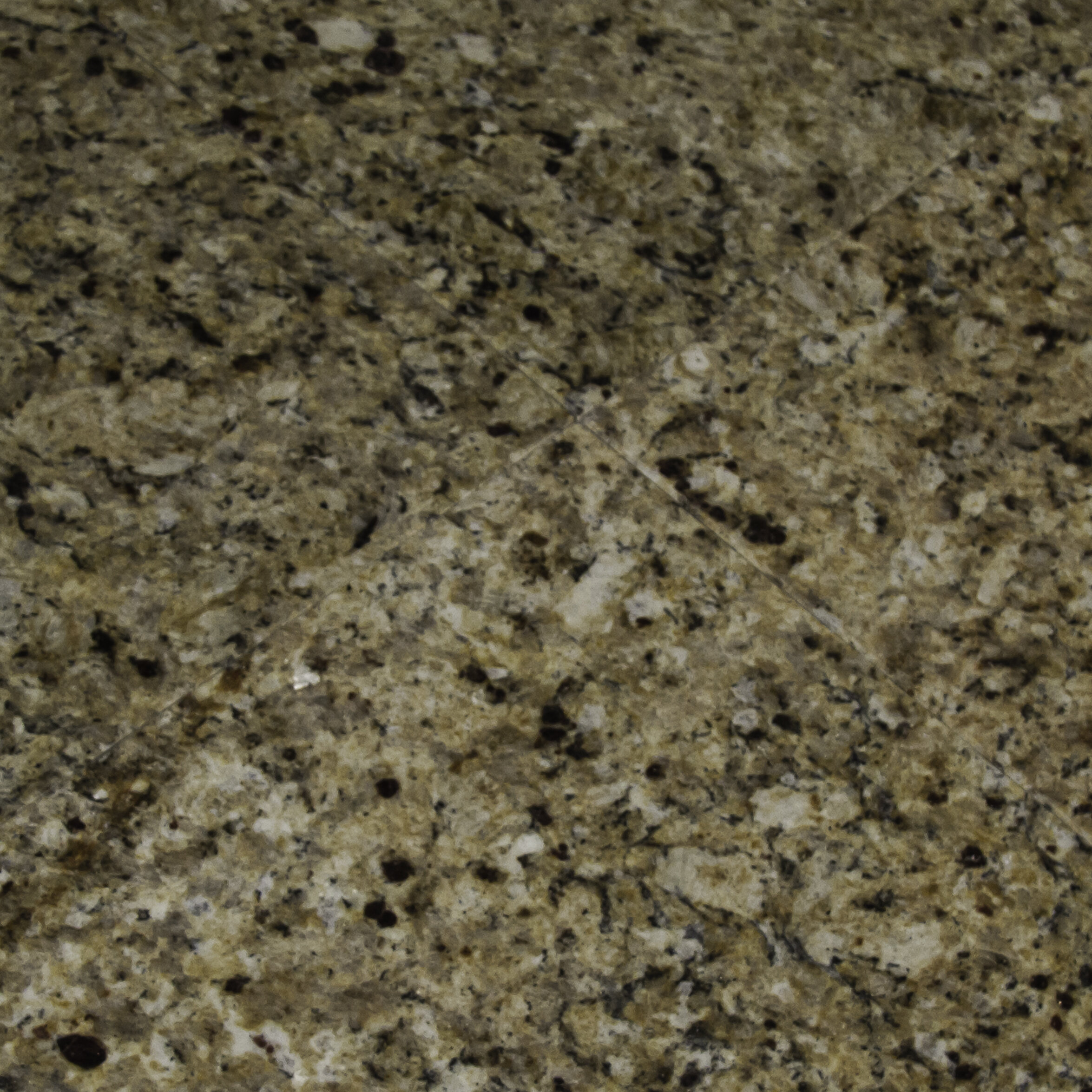 Msi 12 X 12 Granite Field Tile In New Venetian Gold Reviews