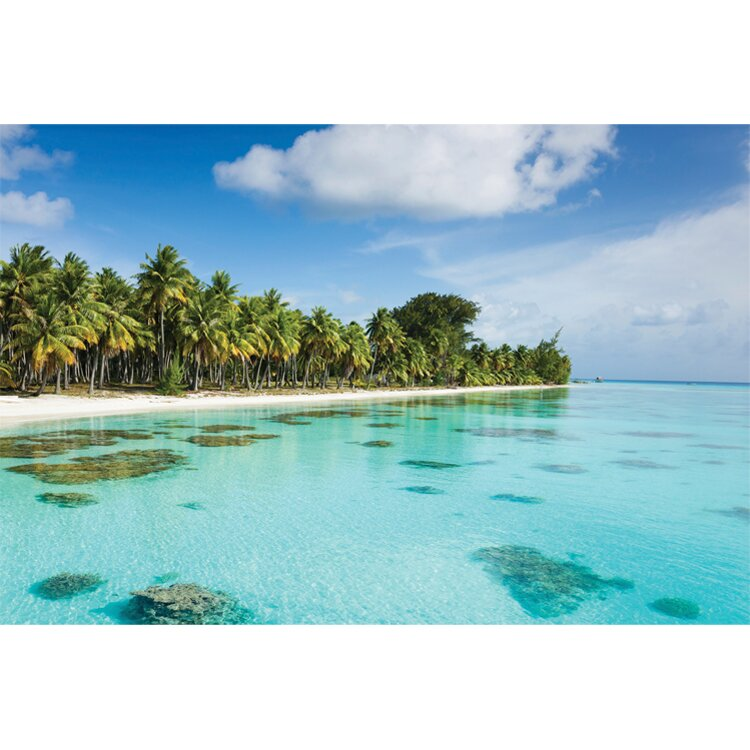 Outdoor Bahama Photographic Print on Canvas
