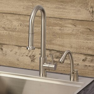 Lenova Single Handle Kitchen Sink Faucet with Pull Down Spray