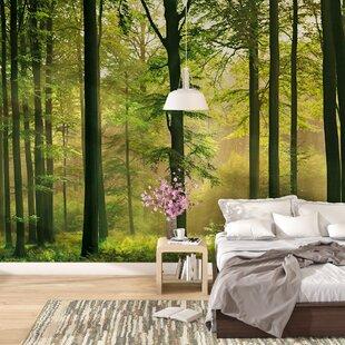 Euan Autumn Forest Wall Mural