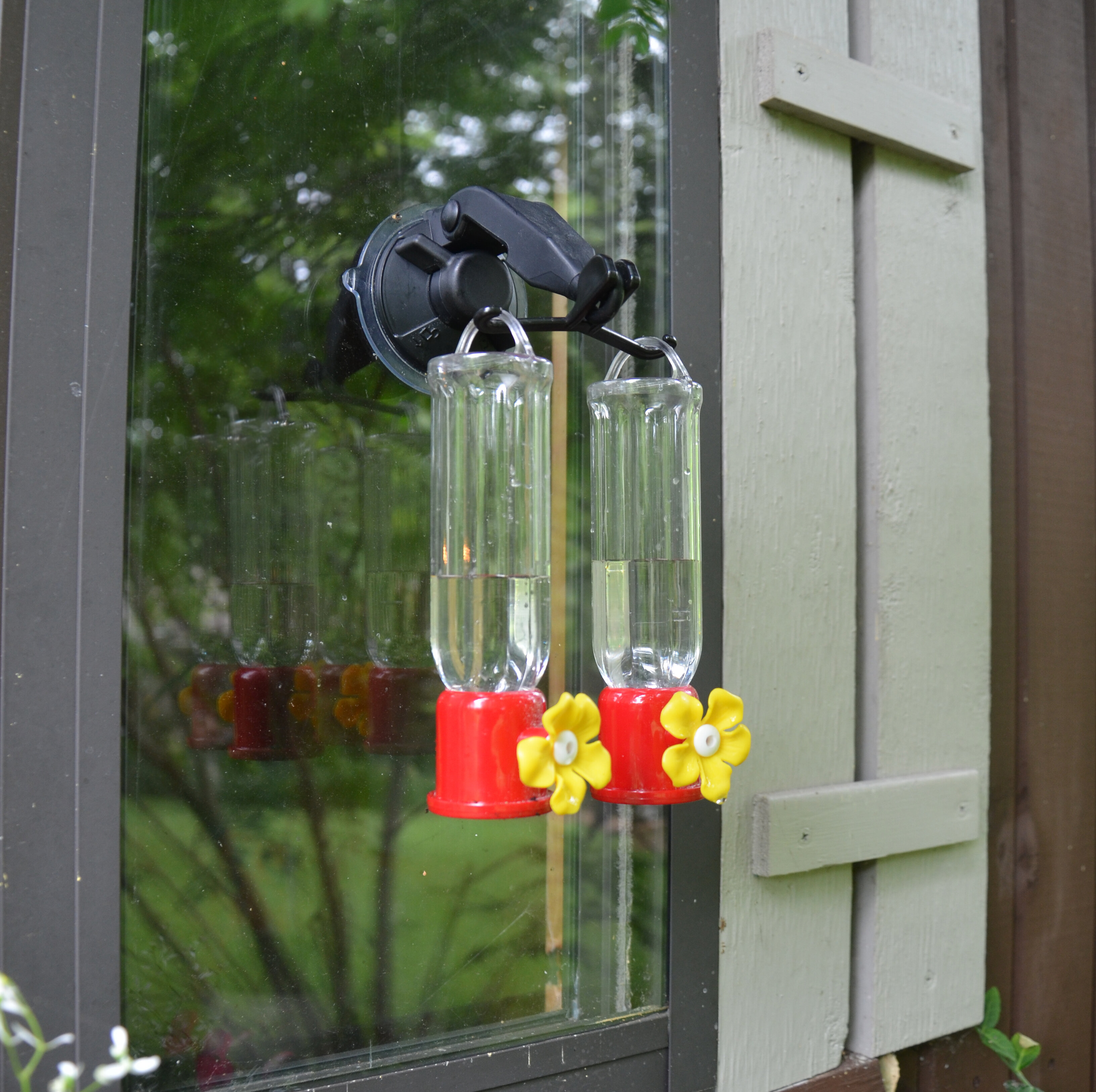 feeders hummingbird bear decorative feeder store honey