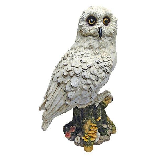 Design Toscano Mystical White Owl Statue Amp Reviews Wayfair