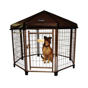dog kennels you ll love wayfair