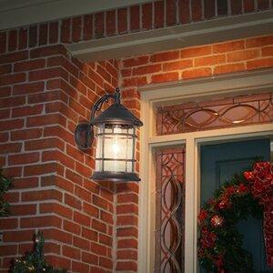 Bella Luce 1-Light Outdoor Wall Lantern