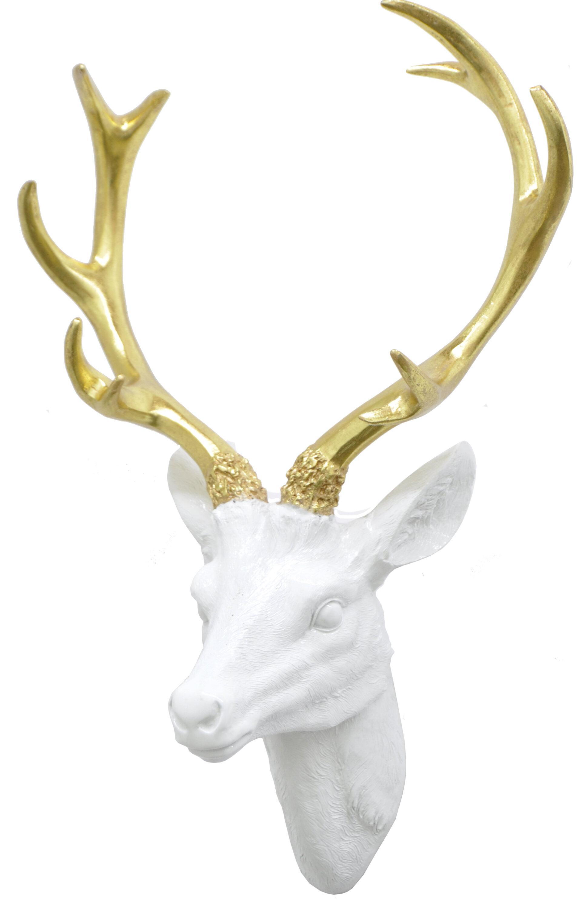 Resin Deer Head Wall Décor U0026 Reviews | Wayfair