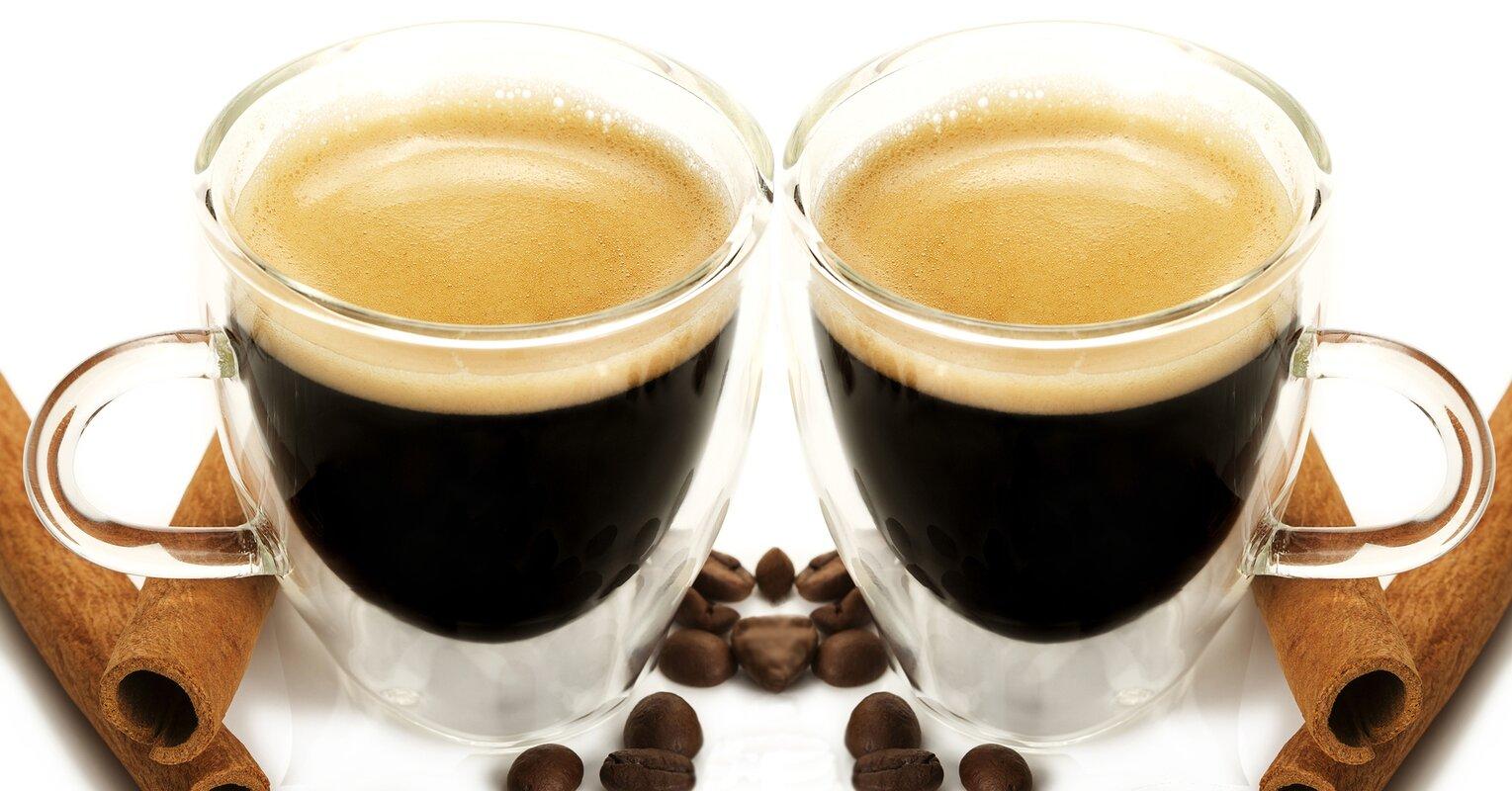 Grosche Turin Double Shot Espresso Cup & Reviews | Wayfair