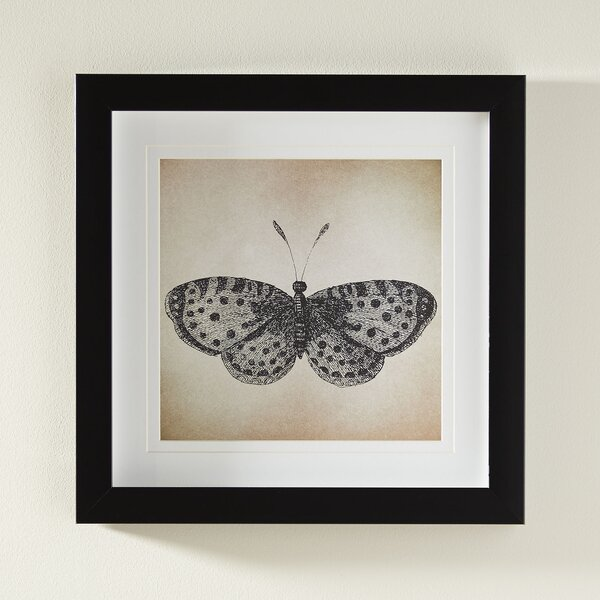 Framed Butterfly Prints | Wayfair