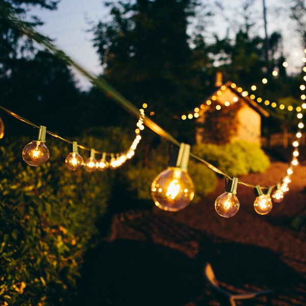 HometownEvolutionInc 50-Light 50 ft. Globe String Lights & Reviews ...