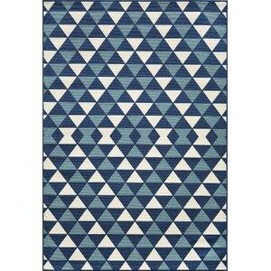 Wexler Hand-Woven Blue Indoor/Outdoor Area Rug
