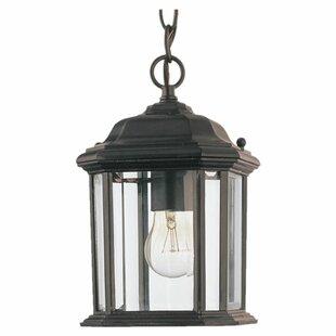 Outdoor hanging lights youll love wayfair burtt 1 light outdoor hanging lantern aloadofball Image collections