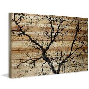 'Branching Out III' by Parvez Taj Print on Wood