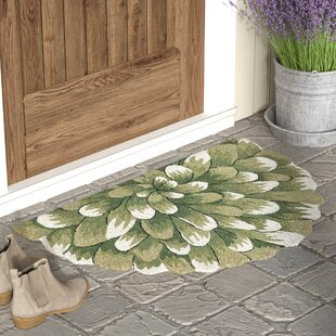 Outdoor Rugs For Front Door Wayfair