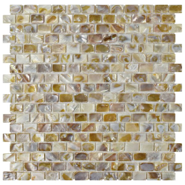 """Mother Of Pearl Mosaic Nightstand Im Obsessed: EliteTile Shore 1"""" X 1"""" Seashell Mosaic Tile In Textured"""