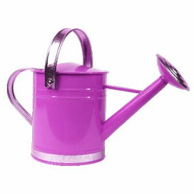 0.5 Gallon Basic Watering Can Arcadia Garden Products Color: Purple