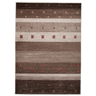 Barite Brown Area Rug by Home & Haus