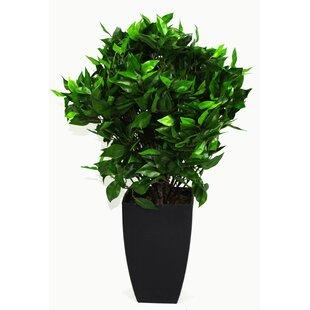 outdoor artificial flowers | wayfair.co.uk Artificial Ornamental Plants