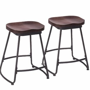 Duboce Bar & Counter Stool (Set of 2)