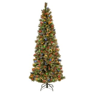 8ac1f43520b Glittering Pencil Slim 7  Green Pine Artificial Christmas Tree with 300 Multi-Colored  Lights