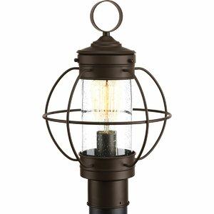 Nayeli 1-Light Lantern Head