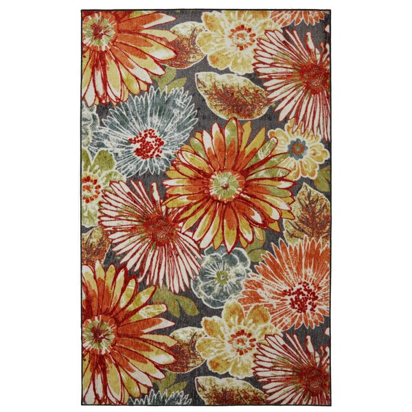 Well known Floral Rugs You'll Love | Wayfair MB54