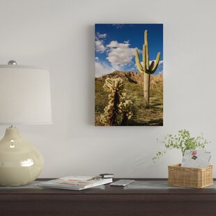 U0027Saguaro Cactus In Desert, Arizonau0027 Photographic Print On Canvas